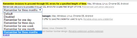Google Chrome Setting Options for SSL Errors