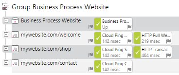 A Possible Website Business Process Group